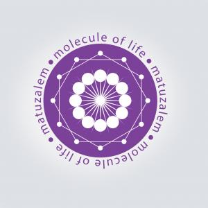 Matuzalem_logo